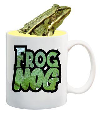 FrogNog