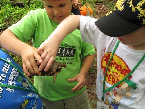 Kids Find a Turtle