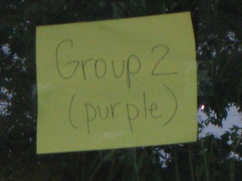 Group 2 (Purple)